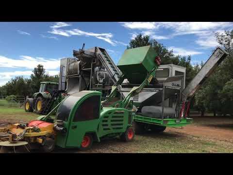 Macadamia Nut Processing Plant - Gympie Australia