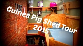 Guinea Pig Shed Tour *august 2015*
