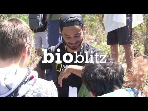 BioBlitz 2016: Washington, D.C.