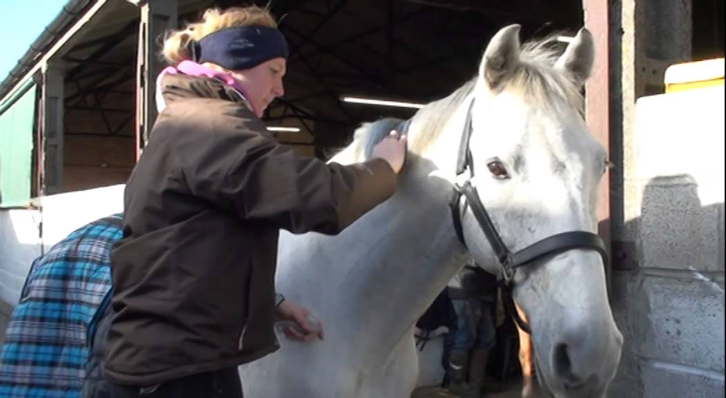 How to plait your horse's mane | Your Horse
