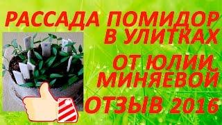 Отзыв -  Выращивание рассады помидор  в улитках от  Юлии Миняевой 15 марта 2016