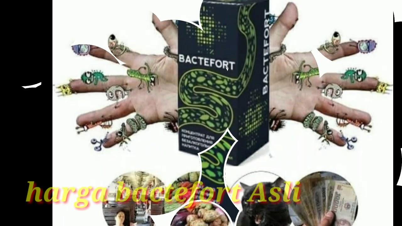 bactefort analóg