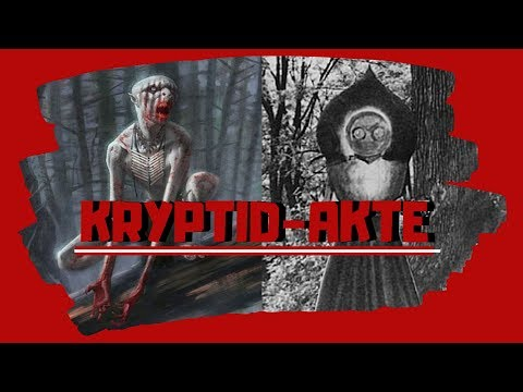Kryptid-Akte: Wendigo, Flatwoods Monster, Allghoi Khorkhoi