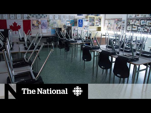 CBC News: The National: Parents and public health agencies concerned about back-to-school safety