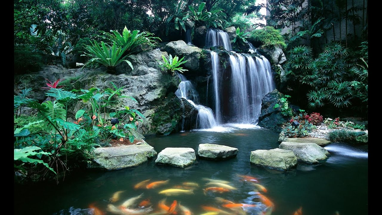 Top 12 estanques koi de jard n con cascadas naturales m s for Jardines madre del agua sl