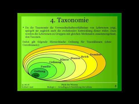 Biologie 1 -  Grundlagen & Entstehung des Lebens