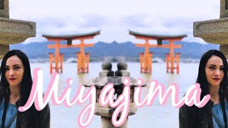 MIYAJIMA ISLAND || Venaditos, Shiba Café & más thumbnail