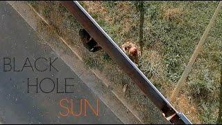 The Walking Dead | Black Hole Sun