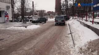 Волгоградцы сняли на видео живодерку, выбросившую из авто щенка на мороз