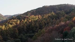 가을단풍_3_충북 괴산군 문강면