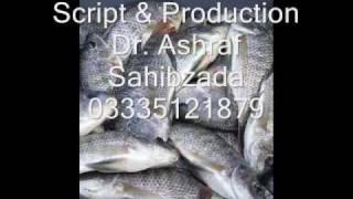 Fish breeds Pakistan audio spot  Dr. Ashraf Sahibzada