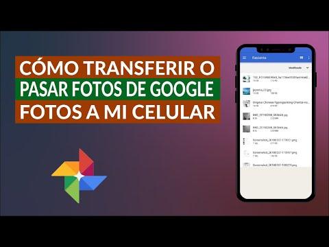 Cómo Transferir, Descargar o Pasar Fotos de Google Fotos a la Galería de mi Celular