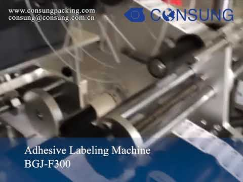 Automatic bags and papers labeler with date and batch coder printing system