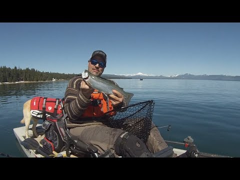 Destination: Lake Almanor For Huge Trout, Big Kings, And Abundant Smallmouth Bass