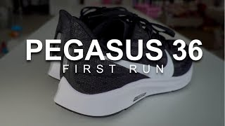 Pegasus 36 - First Run