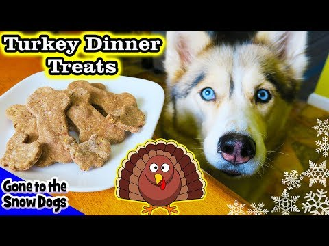 Thanksgiving Dinner for Dogs | DIY Dog Treats | Snow Dogs Snacks 88