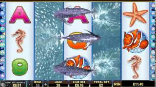 dolphin reef slot machine(Play on WinTrillionsCasino Today and get 150% Bonus up to $750 Claim it now http://ads.wintrillionscasinoaffiliates.com/redirect.aspx?pid=2293&bid=2673., 2014-06-19T09:18:56.000Z)