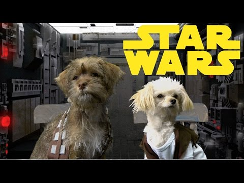 Star Wars Trilogy (Cute Puppy Edition)