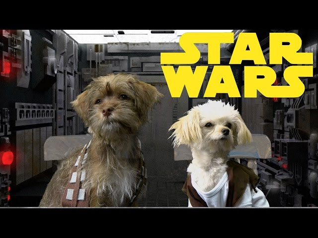 Star Wars Trilogy (Cute Puppy Edition)