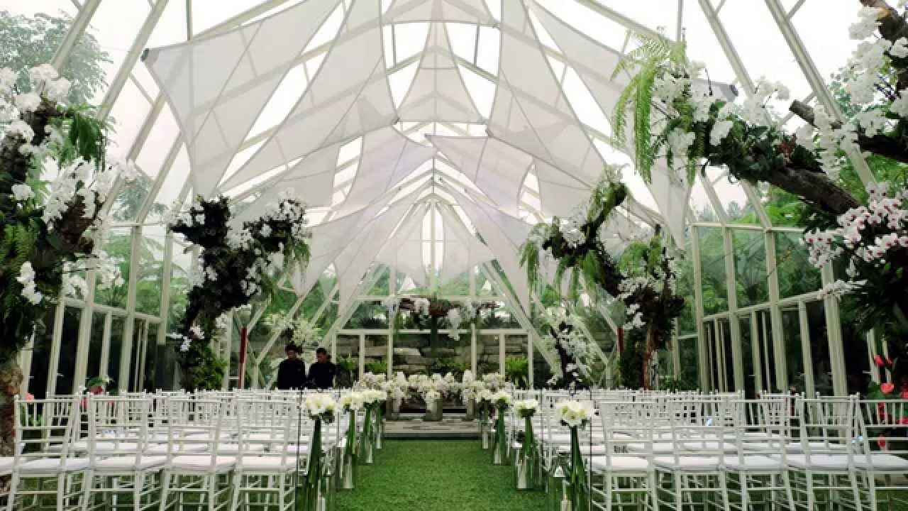 Amaryllis boutique resort and wedding vendors off air diary dave amaryllis boutique resort and wedding vendors off air diary dave junglespirit Gallery