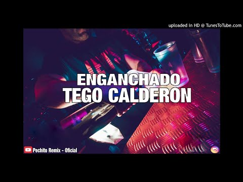 TEGO CALDERON ✘ ENGANCHADO ✘ REMIX FIESTERO ✘ PECHITO REMIX 🔥