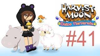 Let´s Play Harvest Moon Deine Tierparade [German] #41 - Die Streithähne Hexe und Zauberer! thumbnail