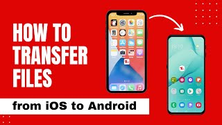 How to Use Zapya to Transfer Files From iPhone to Android screenshot 3