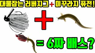 배스낚시 대물병기 러버지그 + 미꾸라지 퓨전 = 6짜?…