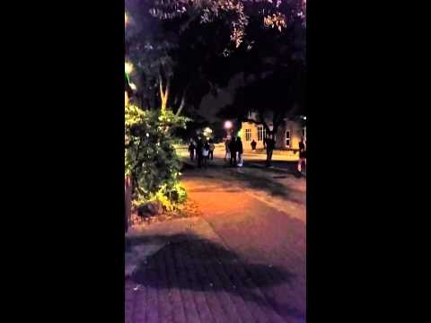 Fight at Texas a&m