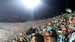 Atletico Nacional Fans