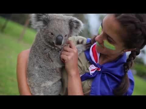 Koala Joey Meets Kangaroos At Symbio Wildlife Park