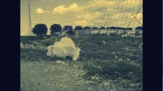 Fabio Orsi - Endless Autumn