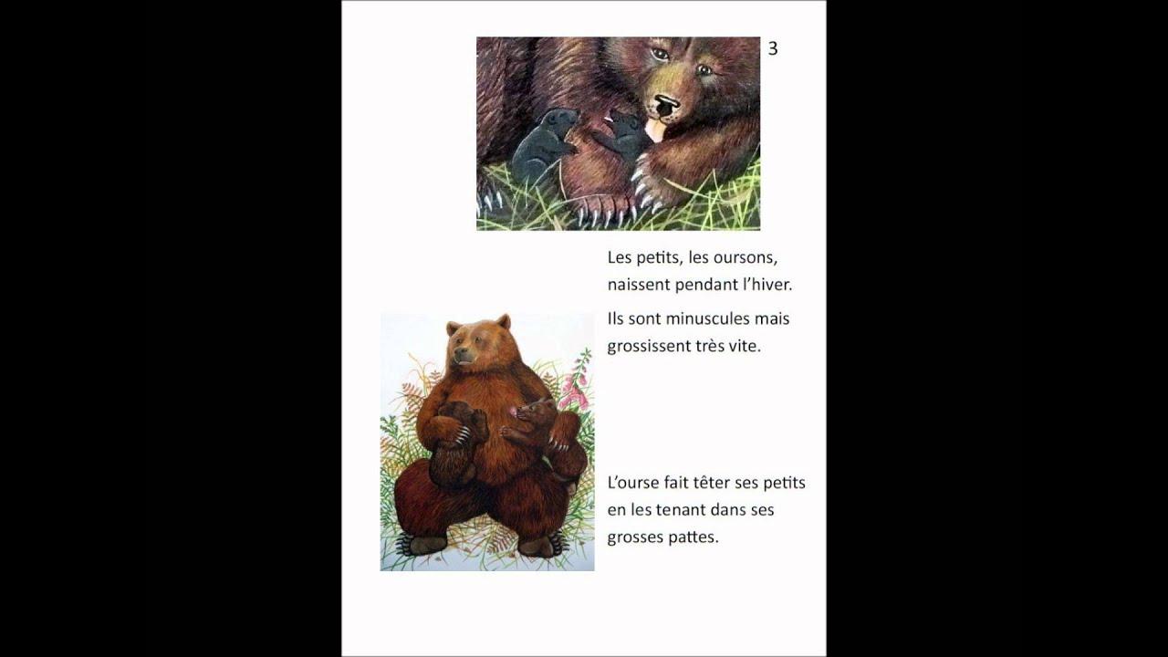 L 39 ours youtube - Dessiner un ours en maternelle ...