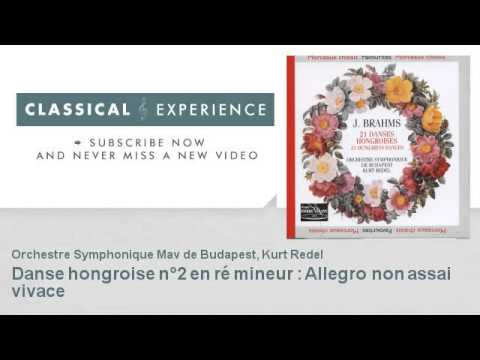 Johannes Brahms : Danse hongroise n°2 en ré mineur : Allegro non assai vivace