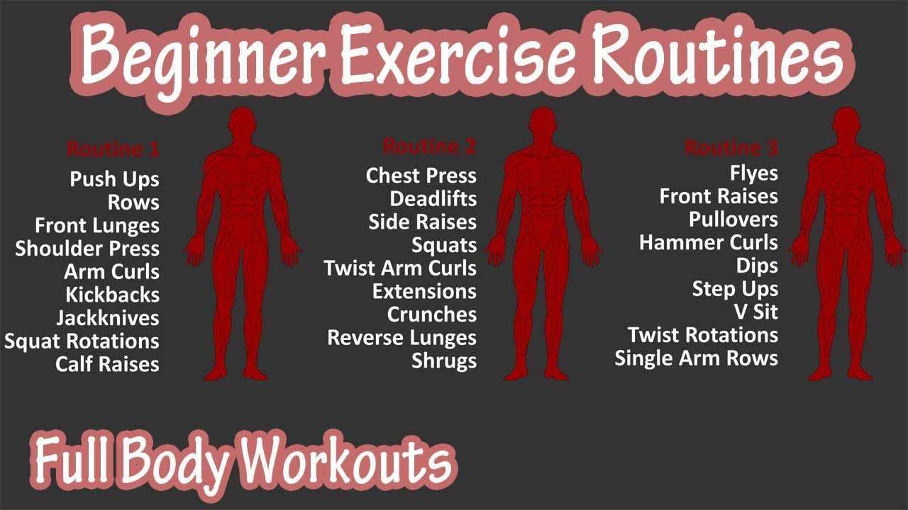 Beginner Full Body Exercise Routines Workouts – Basic Exercises Workout For Beginners At Home