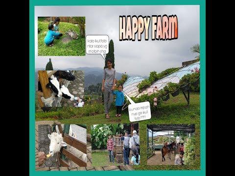 happy-farm-ciwidey-||-destinasi-wisata-bandung