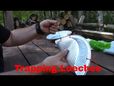Trapping Leeches