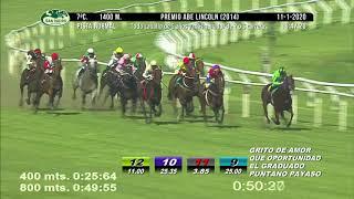 Vidéo de la course PMU PREMIO ABE LINCOLN 2014 (INTERNET)
