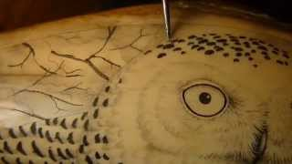 Scrimshaw Demonstration by Adams - Snowy Owl