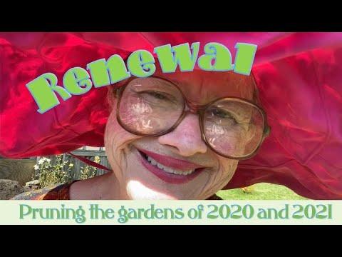 Renewal- Pruning the Gardens
