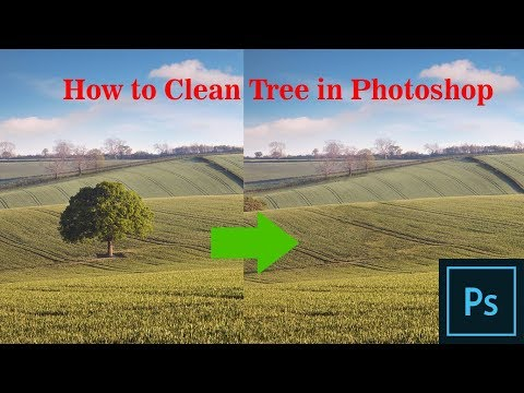 How to clean tree from Background - Clean Object from background - Photoshop Clean Tree