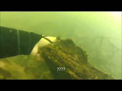 Ijams Nature Center Mead's Quarry Lake Scuba Diving