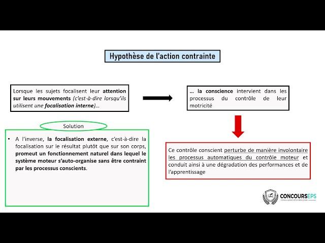Qu'est-ce que l'hypothèse de l'action contrainte ?