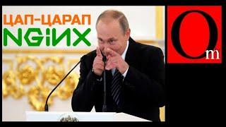 Путин сцап-царапал IT-будущее России. Инвестиции прощайте!