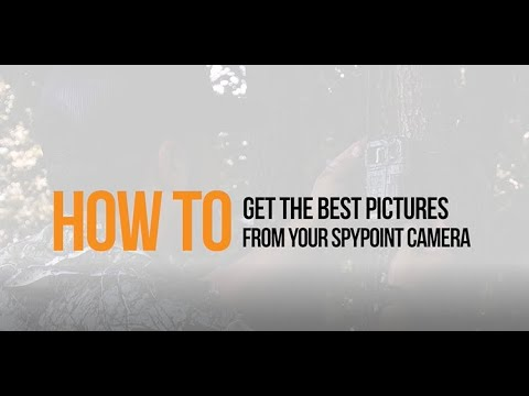 Video: How to Get the Best Photos from Your SPYPOINT Camera| SPYPOINT
