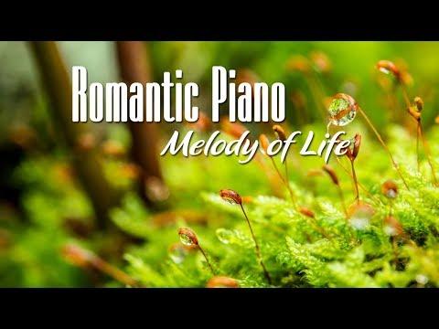 Romantic Piano - Nhạc Piano Không Lời Lãng Mạn Hay Nhất Thế Giới / Giai Điệu Cuộc Sống