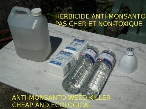 Astuce jardin: désherbant bio, bon marché et naturel -Cheap and ecological weed killer-Monsanto free