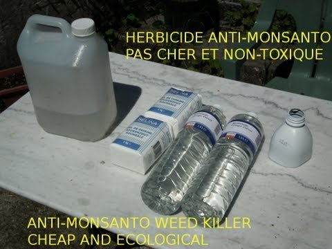 astuce-jardin:-désherbant-bio,-bon-marché-et-naturel--cheap-and-ecological-weed-killer-monsanto-free