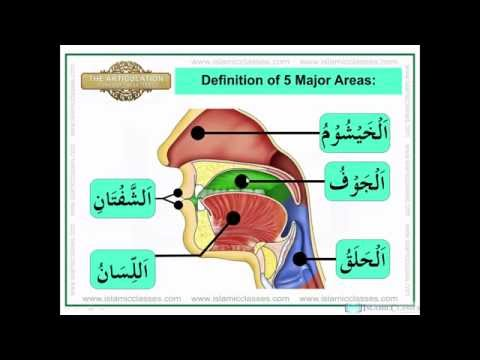Makharij Lesson No 1 - Makharij ul Huruf Definition - Learn Quran with Tajweed in Urdu/Hindi from YouTube · Duration:  26 minutes 10 seconds