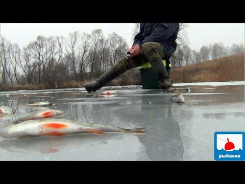 Ловля рыбы зимой на тест